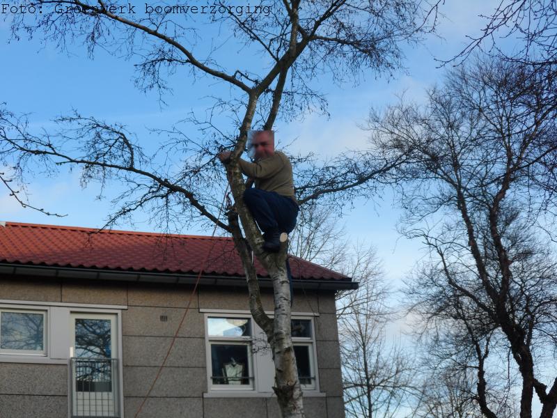 Zelf boom kappen.